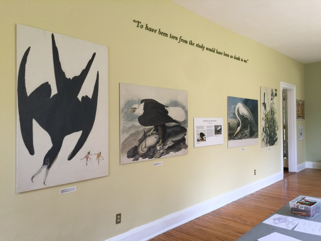 "Part of the Teen Leaders' exhibition, ""Audubon: Birdman for a Fledgling Nation"""